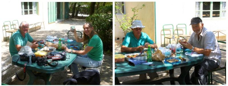 Mini rencontre Spipoll à Uzès le 17 juin : compte rendu Photo310