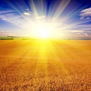 ЖАТВА БОЖИЯ ПОСПЕЛА! стихи ХВЕ о Духе Святом 31833110