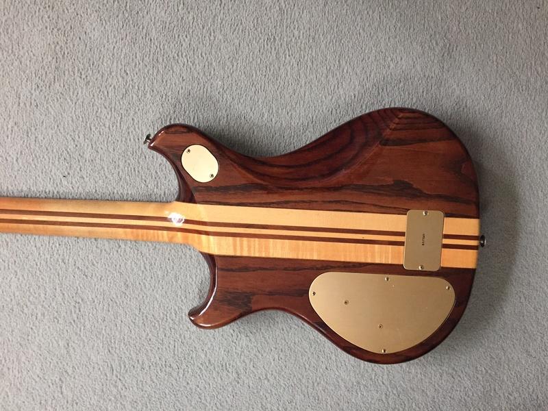 Thunder 3 12 string Img_2515