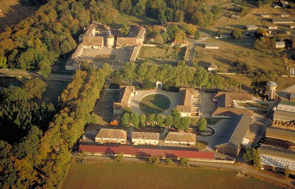 La Bergerie royale de Rambouillet Merino12