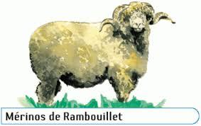 La Bergerie royale de Rambouillet Xw10