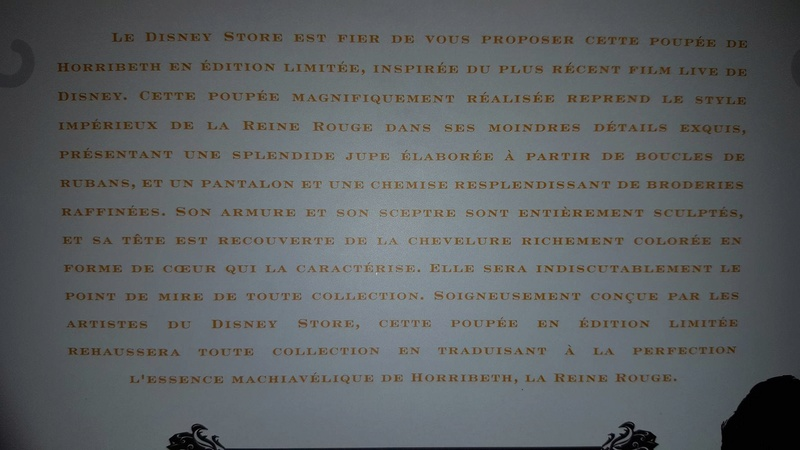 Disney Store Poupées Limited Edition 17'' (depuis 2009) - Page 5 13682413