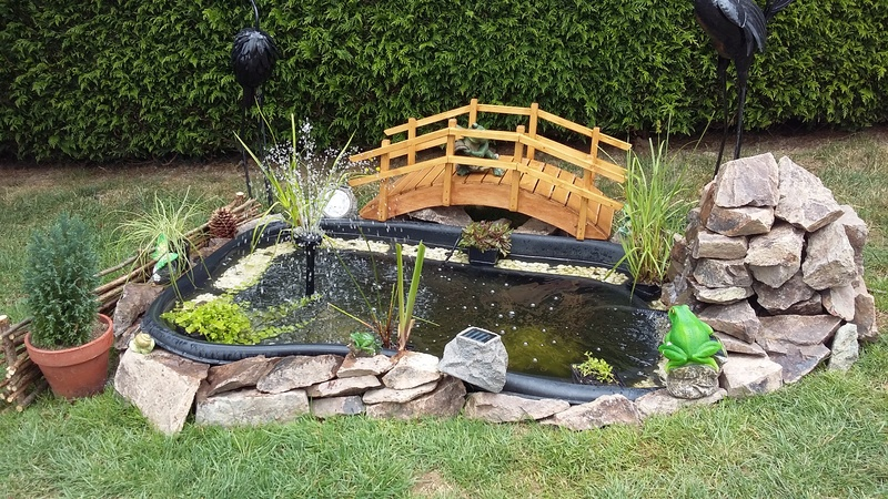 conseils pour le bon fonctionnement d un petit bassin  19210