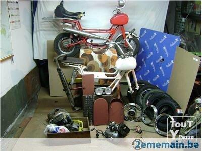 Quelques photos des mes ZAMOURS Image10