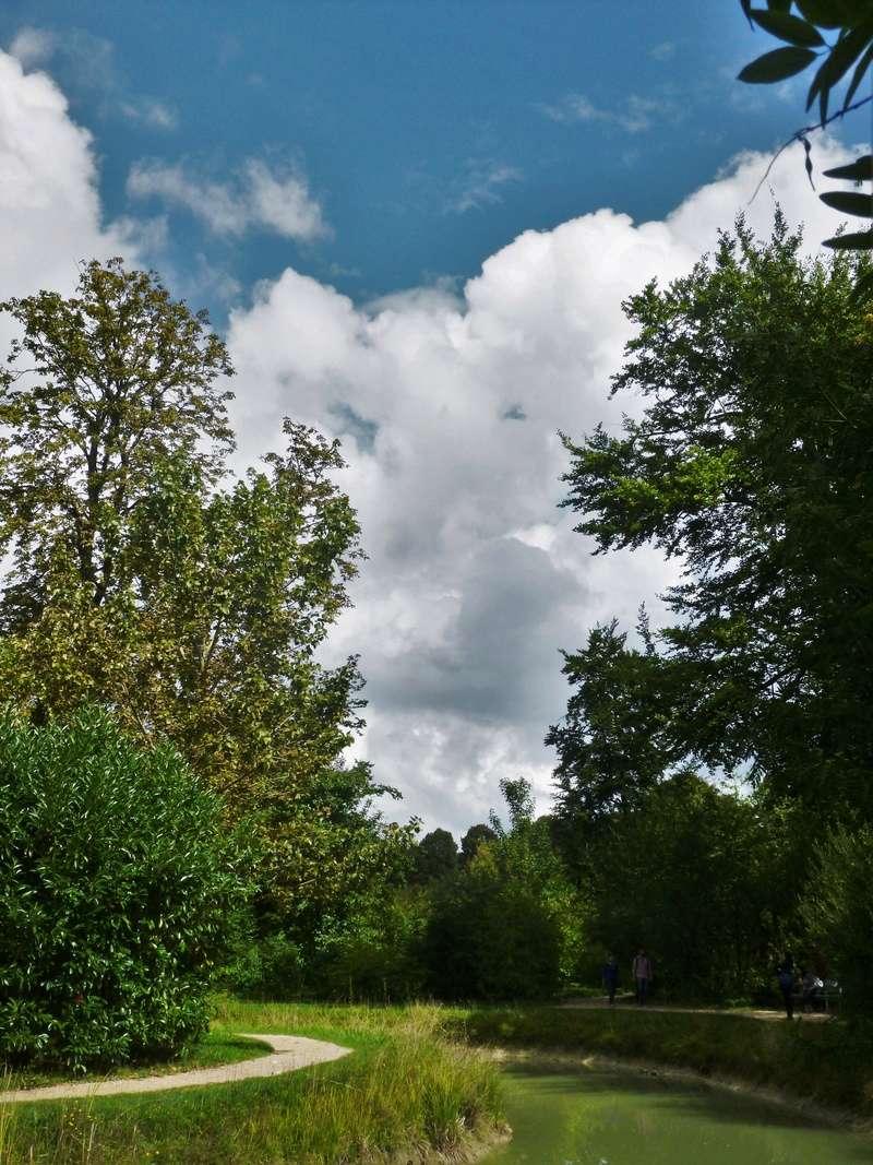 Les jardins du Petit Trianon - Page 2 P1130728