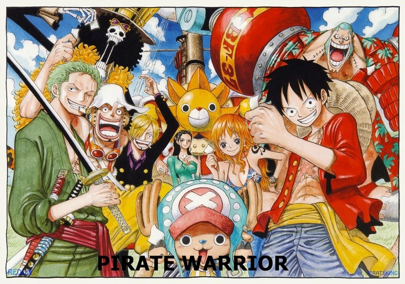 pirate warriors