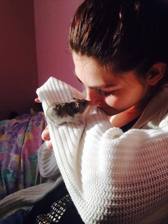 Photos de vos hamsters russes  13442210