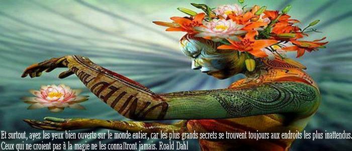 Bardit du Corbeau Vdtsi10