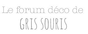 Le forum déco de Gris Souris