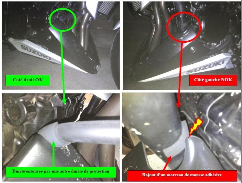 Durite radiateur abîmée par sabot Suzuki 2016 Durite10