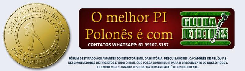 Detectorismo Brasil