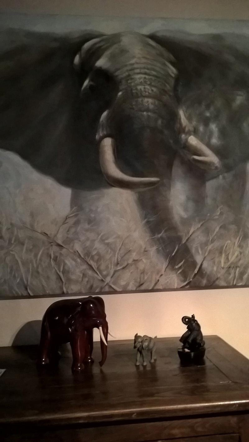 Arrêtons de parler de zèbres, merci. Wp_20110