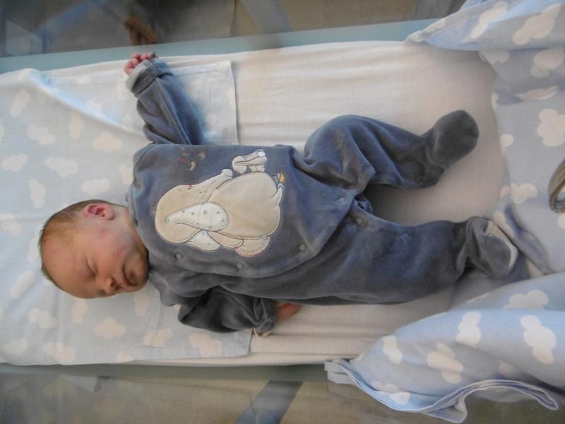 Mon petit prince William P1000910