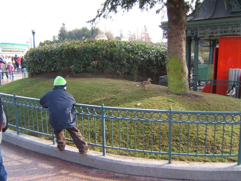 Séjour au cheyenne 02/2007 : la désillusion  Dscf2514