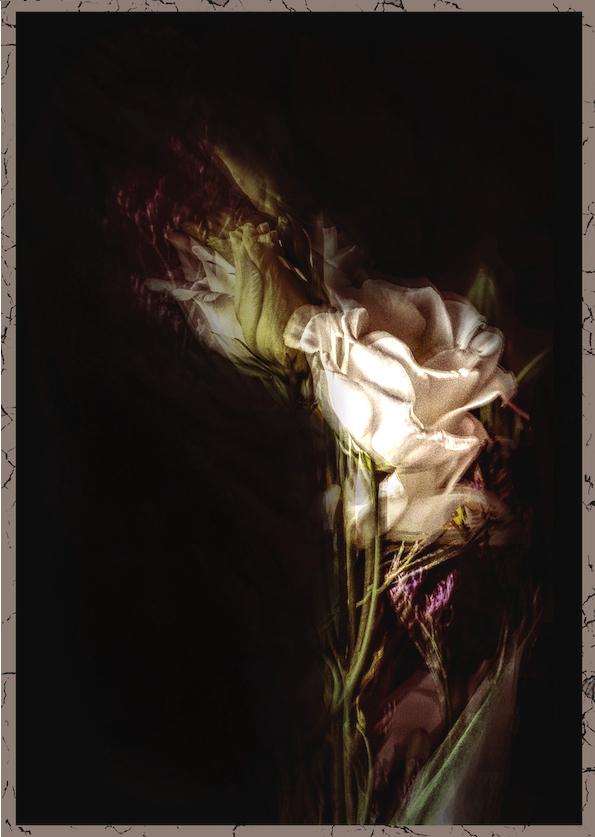 Bouquet trafiqué Bouque16