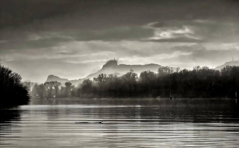 Petit matin pluvieux sur le Rhône Vivier10