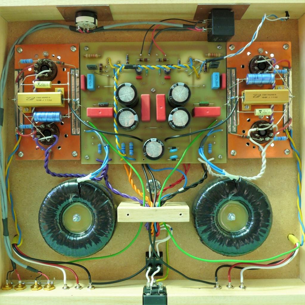 diy valvulas preamplificadores, amplificadores e mais.... - Página 4 P1090416