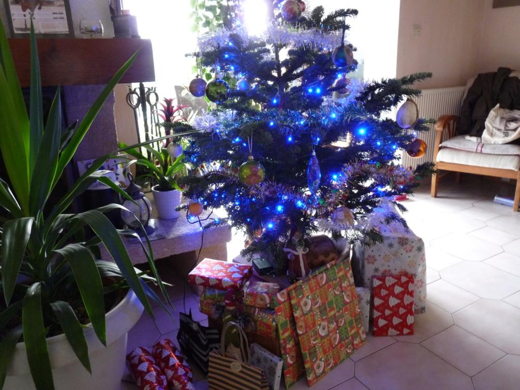 Votos de um Feliz Natal P1090611