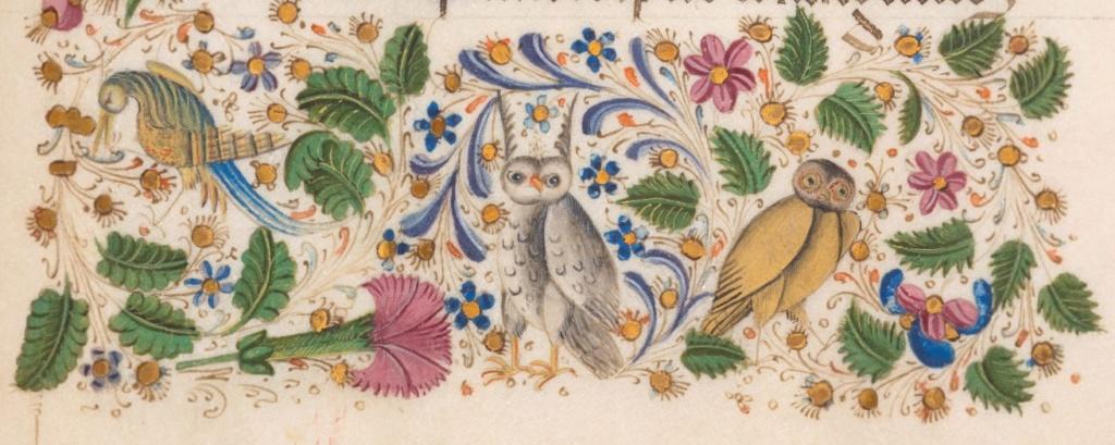 Marginalia @ Cie. - Page 4 Oiseau11