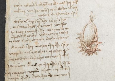 Marginalia @ Cie. - Page 2 Vinci10