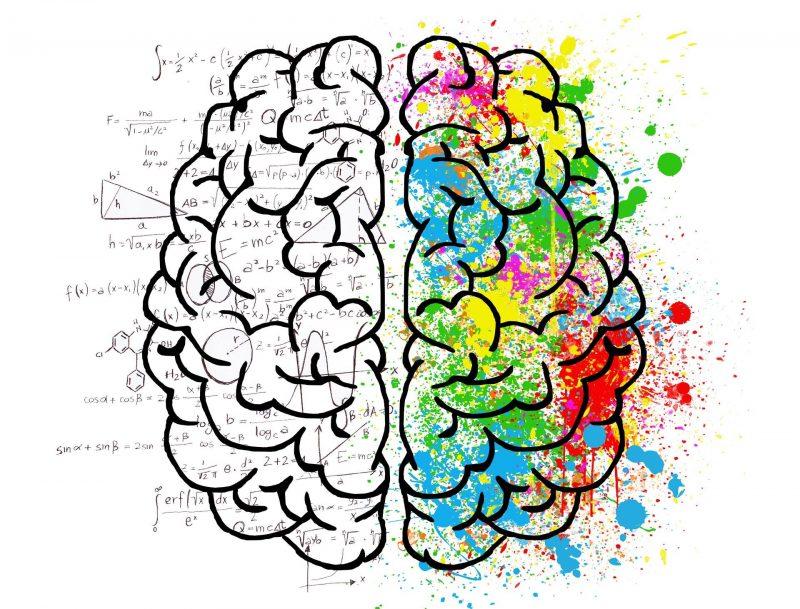 Split Brain: Historia de un cerebro dividido Split-10