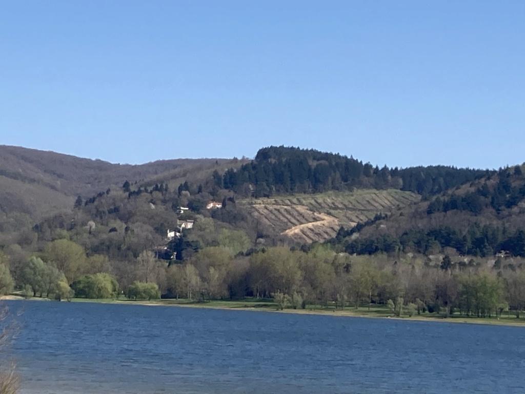 Une Ténéré en Ariège  - Page 2 F4f18310