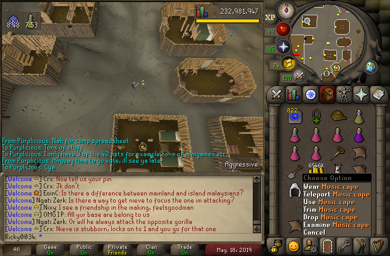 ricky0034's screenshot dump thread - Diary cape+Music cape done - Page 13 2019-063
