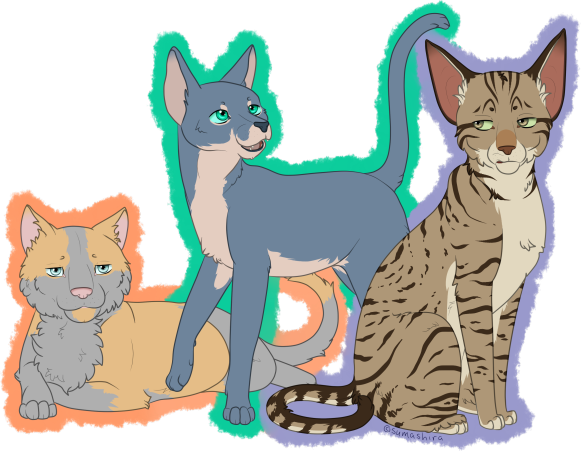 WindClan Ceremony Requests Suma_s13