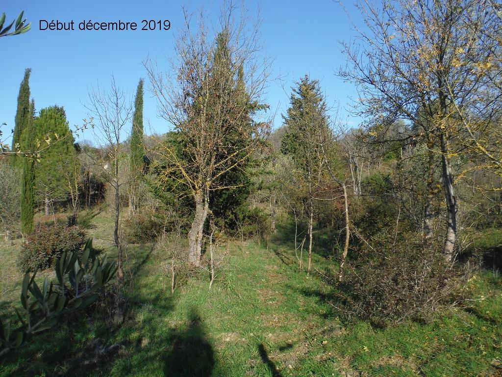 JdB de 4 hectares de pâtures dans le SUD : Janvier à la diète... + expérimentation - Page 13 4041pa10