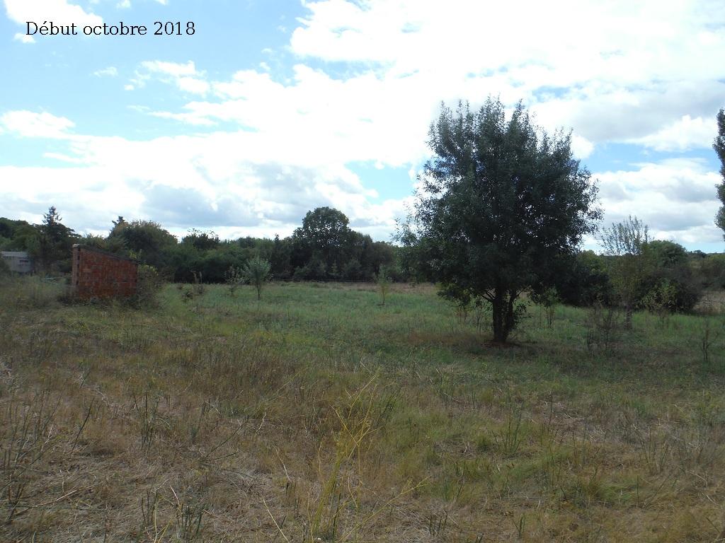 JdB de 4 hectares de pâtures dans le SUD : Avril 2019, et toujours la sécheresse... - Page 9 7027pa10