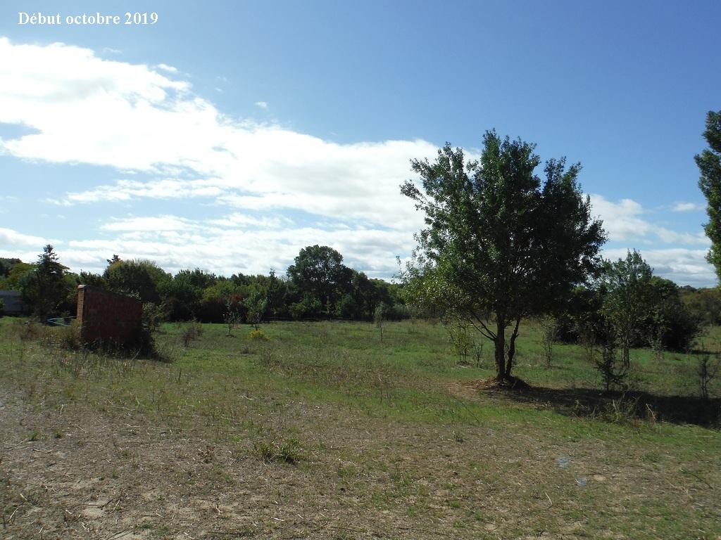 JdB de 4 hectares de pâtures dans le SUD : Timide reprise après 8 mois de sécheresse - Page 13 7039pa10