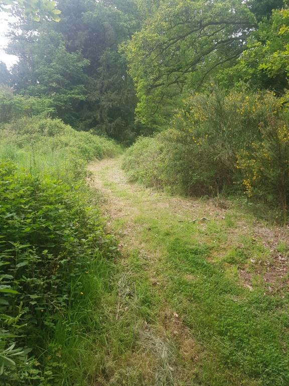 le sentier de Tuchennou au bourg de Brasparts 20190510