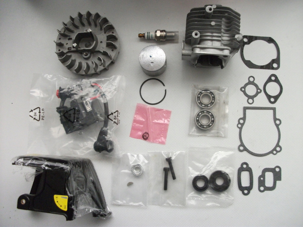 et un moteur fuelie 26 sur SC Dscf2011