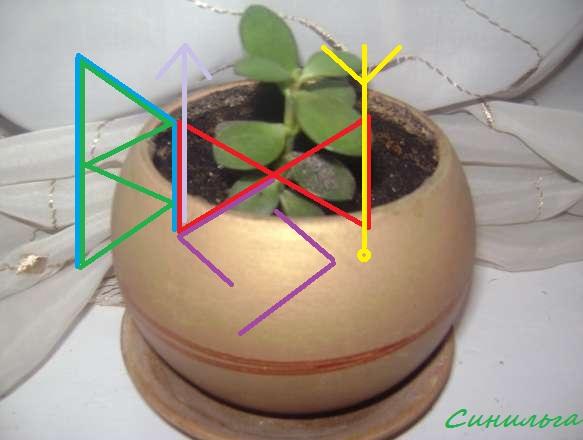 Вязь для роста растений 12