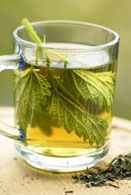 What is nettle tea good for? Brandn10