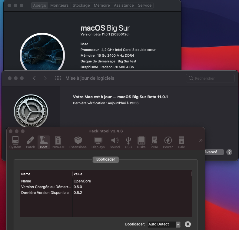 macOS Big Sur 11 Beta - Page 11 Captu133