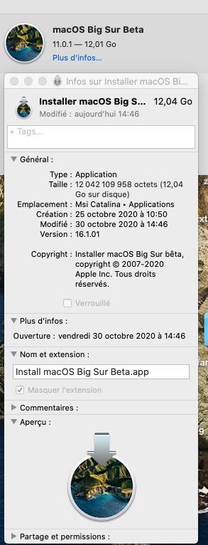 macOS Big Sur 11 Beta - Page 11 Captu138