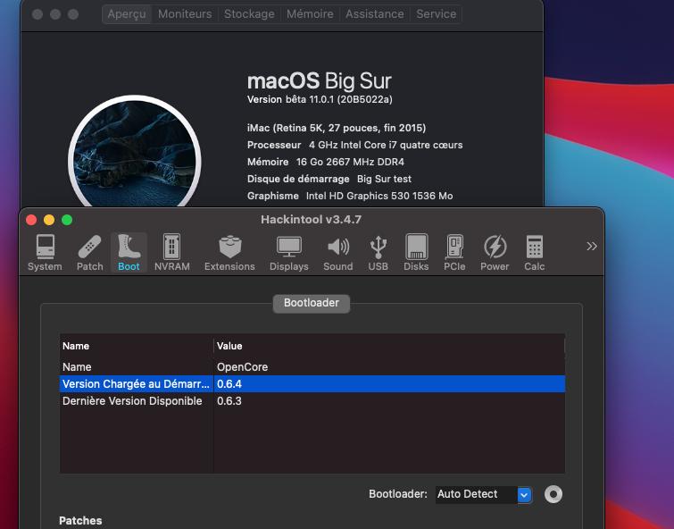 macOS Big Sur 11 Beta - Page 11 Captu148