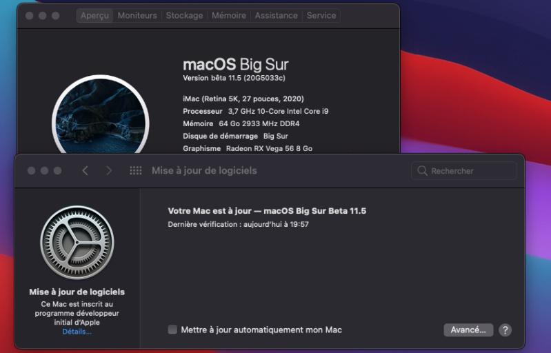 macOS Big Sur 11 / 11.1 / 11.2 / 11.3 / 11.4 / 11.5 /(Beta) - Page 17 Captu303