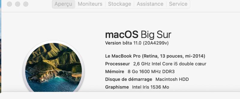 macOS Big Sur 11 Beta - Page 2 Captur74