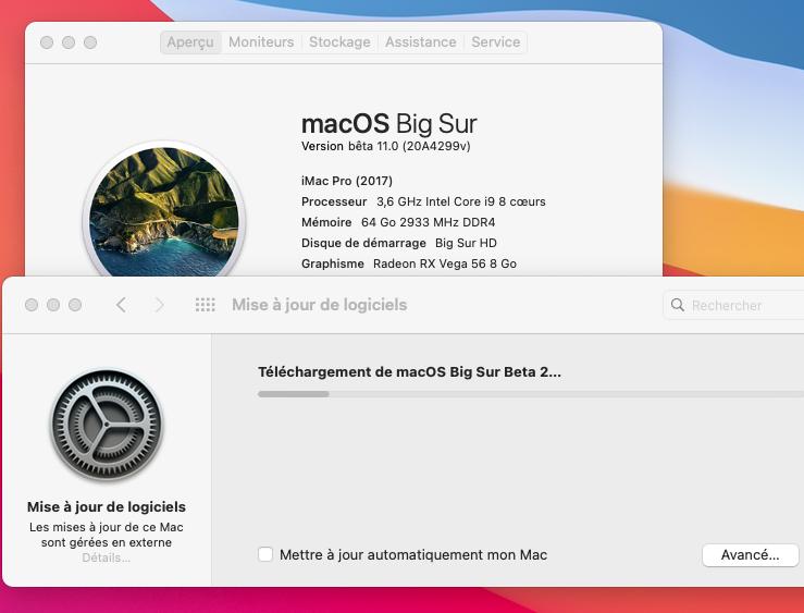 macOS Big Sur 11 / 11.1 / 11.2 / 11.3 (Beta) - Page 3 Captur80