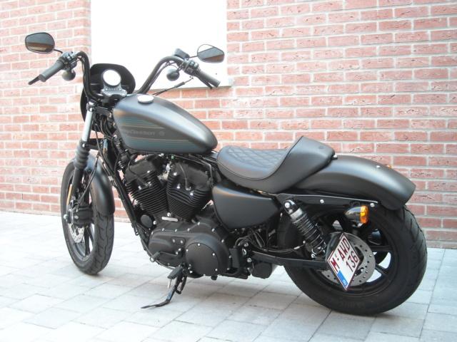 Photos de nos belles - Page 7 Harley14