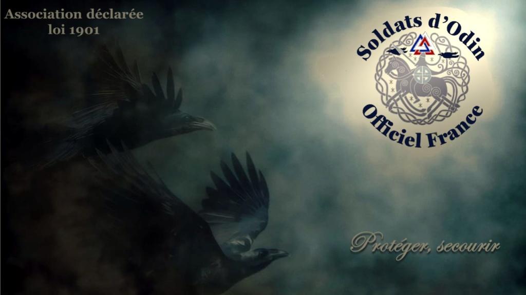 SOLDATS D'ODIN OFFICIELS FRANCE (Membres et Supports)