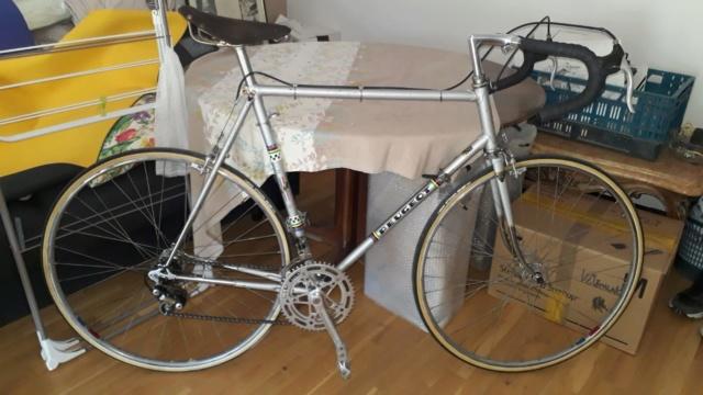 Le Peugeot PX 10 de 77 du grand-père qui n'aimait pas le vélo  Peugeo10