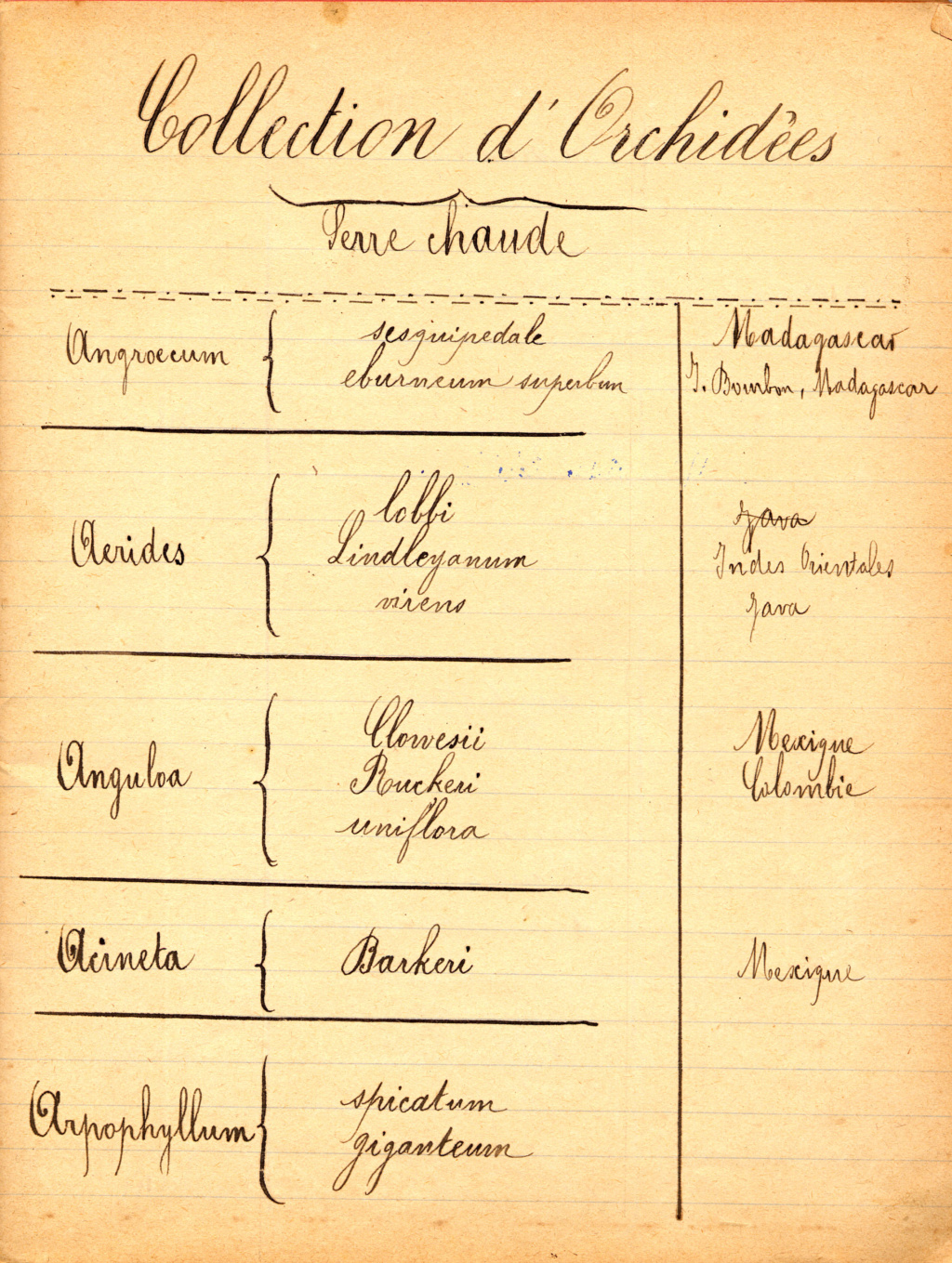 Inventaire d'une collection d'orchidée en 1891 Serre_10