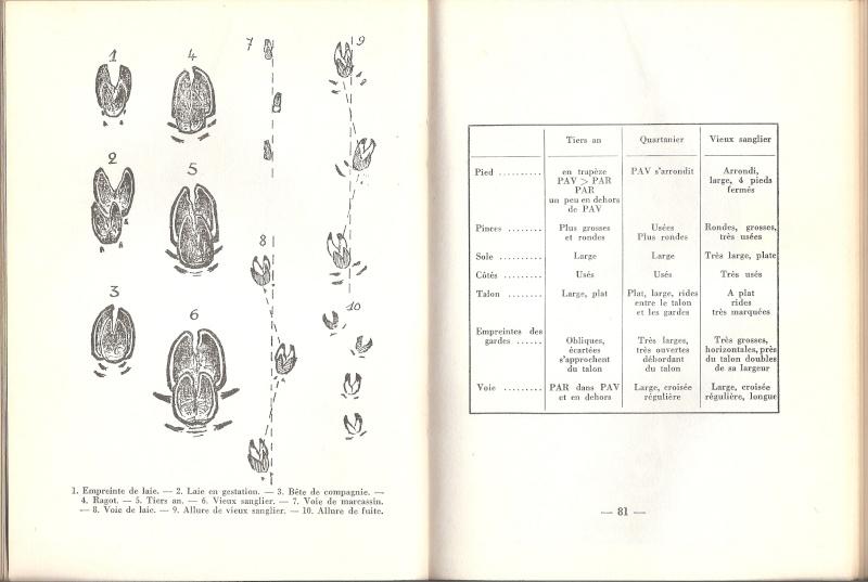 Correspondance poids/empreinte - Page 6 Numari10
