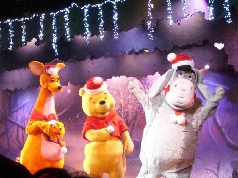Le Noël Enchanté Disney (du 9 novembre 2012 au 6 janvier 2013) - Page 2 Dsci0116