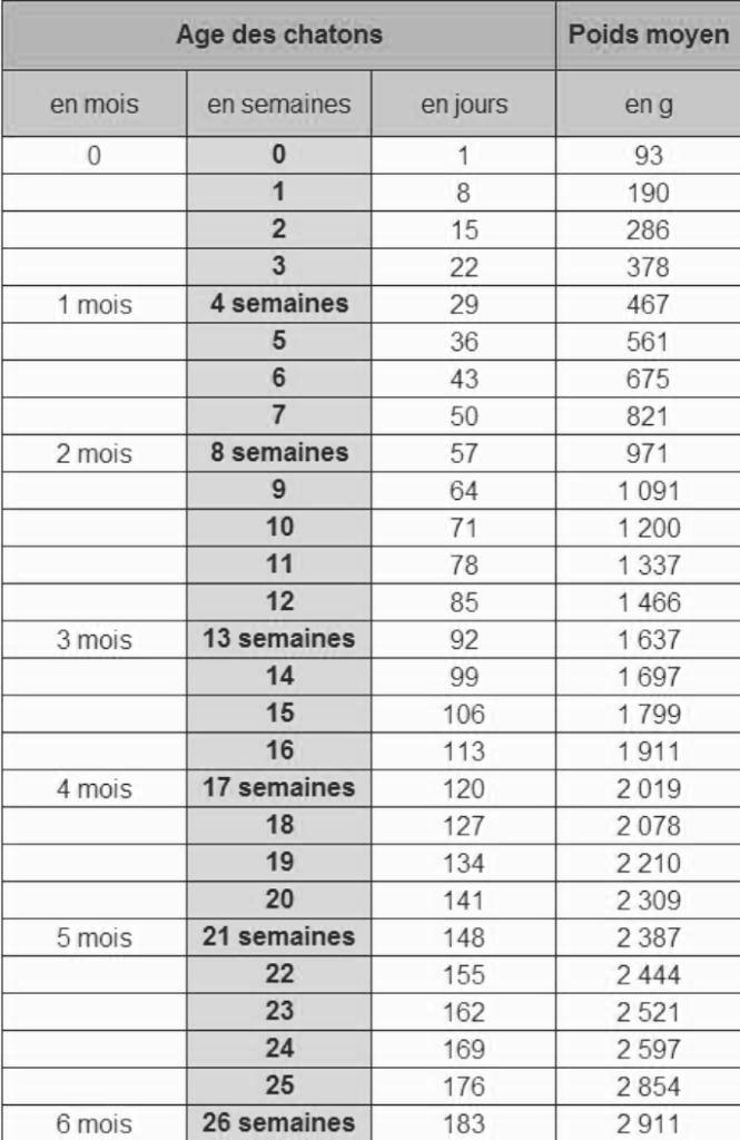 DISCUSSIONS FELINS Nouvel10