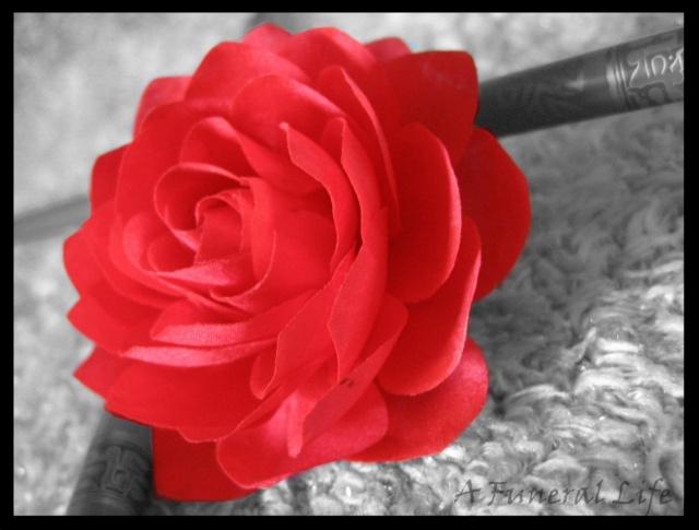 Chambre noire Flower10