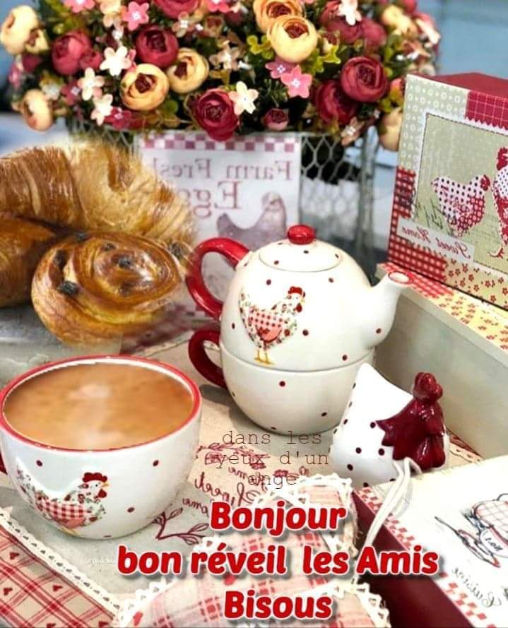 Bonjour/Bonsoir2020 - Page 13 Receiv15